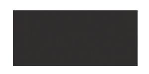z16-logo